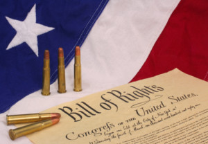 constitution and guns